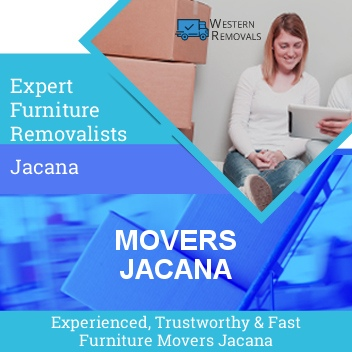 Movers Jacana